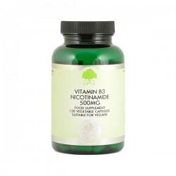 Witamina B3 (amid kwasu nikotynowego) 500 mg - suplement diety