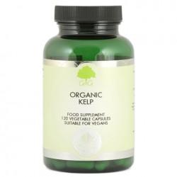 Organic Kelp - suplement diety
